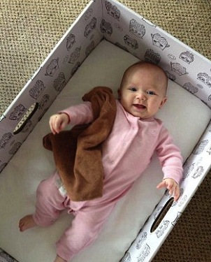 Forget the Pricey Bassinet, Why Not Put Bab…