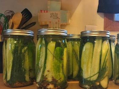 Refrigerator Garlic Dill Pickles