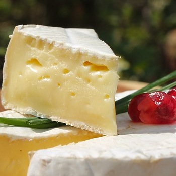 Why You Should Go Ahead and Add Cheese To Your Daily Diet