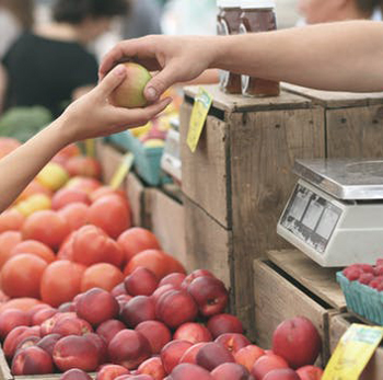 Our Fall Farmer's Market Tips & A @Rubbermaid #FreshWorksFreshness Giveaway!