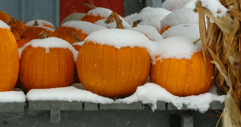 Were You Dreaming of a White Halloween?