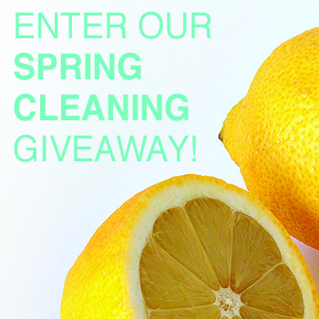 Turn Lemons into Sponges - and a $100 Gift Card Giveaway!