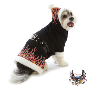 Pets Rock Flame Holiday…
