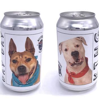 Have a Beer, Adopt a Dog!